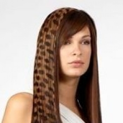 safari_hair_extension_hair_tattoo_cheetah-